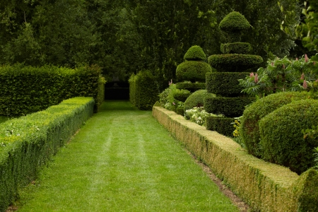 beautiful park photo