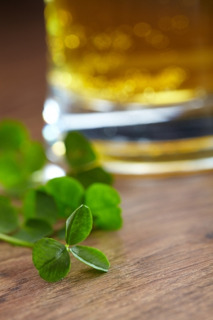 saint paddy's: clover and beer  Stock Photo