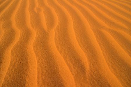 desert sand: desert sand