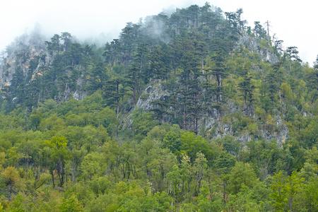 montenegro: mountains of Montenegro