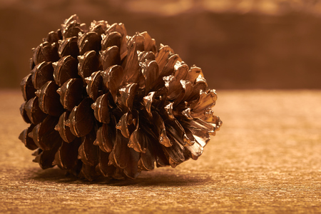 christmasy: gold cone