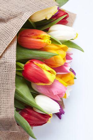 tulipan: Å'adne tulipany