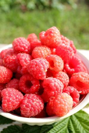 raspberries: fresh raspberries