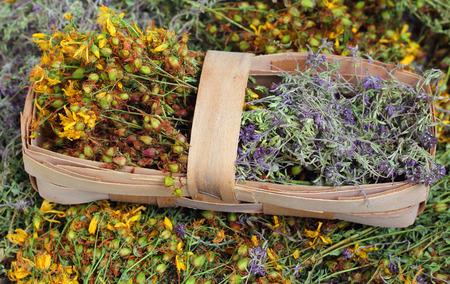 tannin: medicinal herb tea