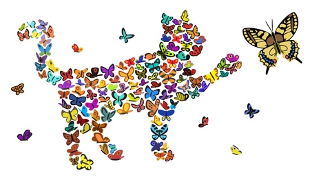 cat drawing: butterflies Illustration