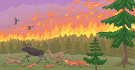 Emergency situation. A huge fire burns in the forest. Beasts flee from death.