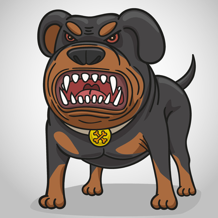 Dog Rottweiler gets angry, growls, bares his teeth