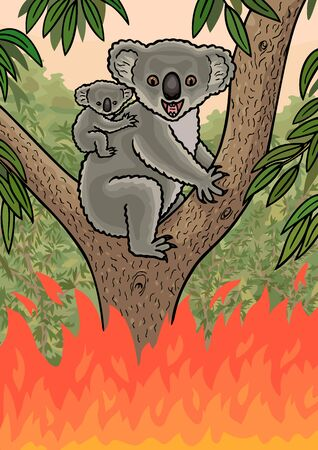 An Australian Koala was caught in a forest fire.