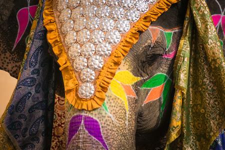 elefante indio en una coloración festivo en Jaipur Foto de archivo
