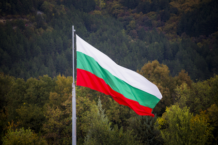 Bulgarian Flag waving in the wind in a forest