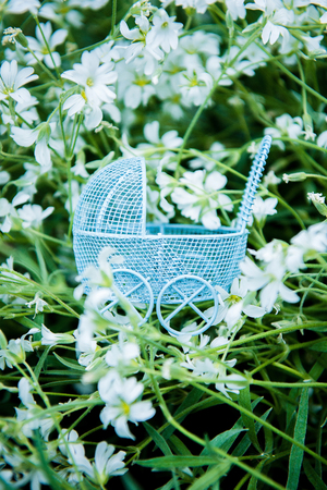 Blue stroller on a gren background with white flowers in it pointing sideways. A toy baby stroller in gentle flowers. Childrens toy, souvenir Banco de Imagens