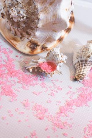 Beautiful seashells of different sizes and a pink bath salt Фото со стока