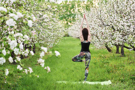 Outdoor yoga practice. Young woman wearing sports wear standing in Vrksasana exercise, Tree pose, working out, on the green lawn, in spring blooming garden, back view. Hands raising up in namaste.