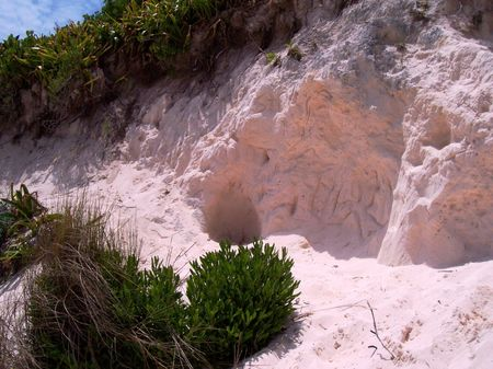 The pink sand of Bermuda takes your breath away!
