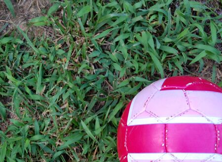 Pink soccer ball in the grass