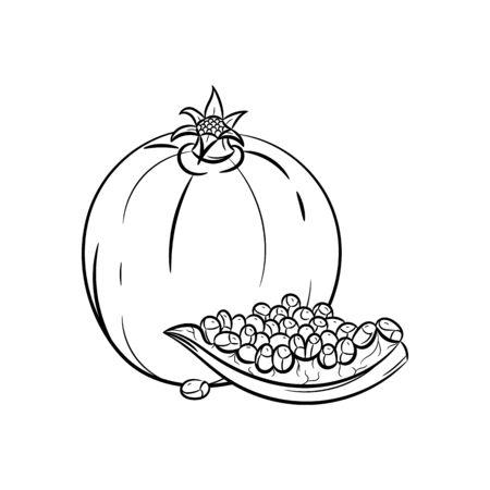 garnet: Garnet.  garnet illustration isolated on white background Illustration
