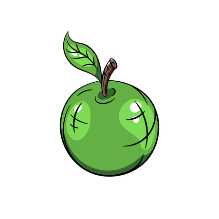 tailings: Vector green apple with green leaves. Vector illustration on white background