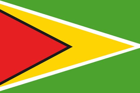 frontview: An illustration of the flag of Guyana Stock Photo