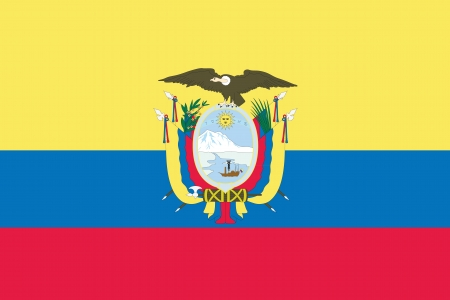 An Illustrated Drawing of the flag of Ecuador