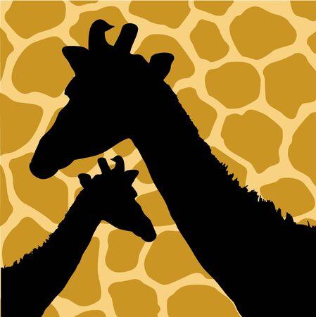 hide: An Illustration of Giraffe Hide Pattern with Giraffes Stock Photo