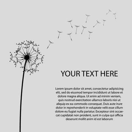 An Illustrated Dandelion Clock Flower on Grey Background Vector