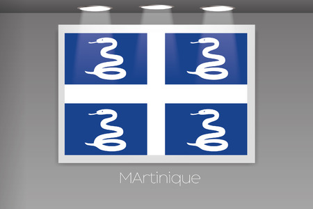 martinique: A Flag Isolated on Gallery Wall of Martinique