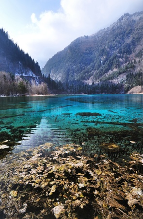 Five Flowers Lake at Jiuzhaigou National Park, Sichuan  One of the natural wonders of China