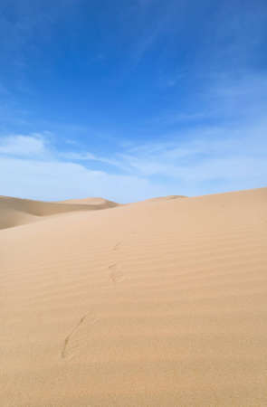 footstep: Footstep in the Desert, China