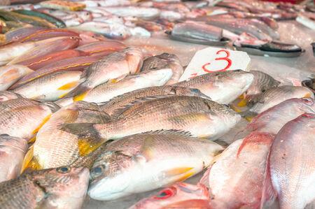 Fresh fish on sale at a Hong Kong wet wet market photo