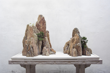 Rock display at the Couples Retreat Garden, Suzhou, China