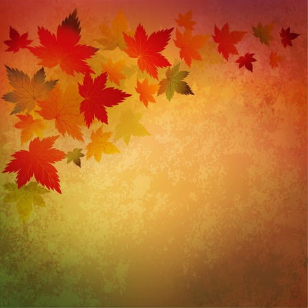 fall leaves: Vector Abstract autumn vintage background