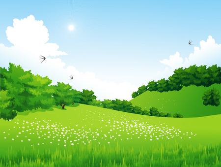 пейзаж: Вектор Зеленый пейзаж с деревьями, облака, цветы. Летний луг