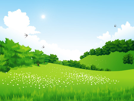 flower meadow: Vector Green Landscape with trees, clouds, flowers. Summer meadow