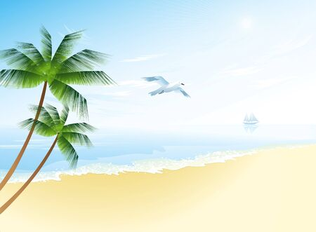 Summer beach with palm trees and seagull  vector illustration Vector