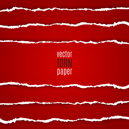 white textured paper: Vector illustration red torn paper. Template background