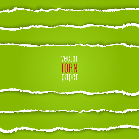 Vector illustration green torn paper. Template background