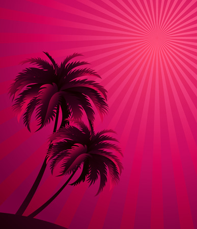 palm tree sunset: sunset background with palm tree silhouette.