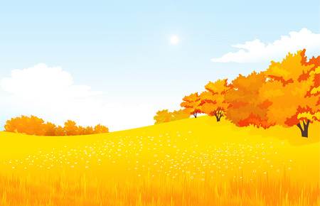 forest landscape: Vector illustration autumn rural landscape with meadow and forest