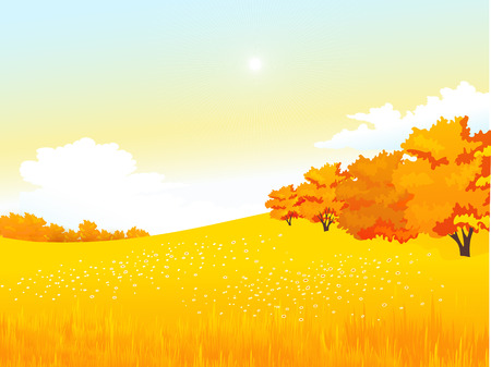 harvest field: Vector illustration autumn rural landscape with meadow and forest