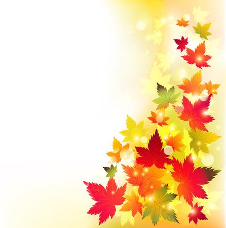 autumn leaves background: Autumn maple leaves background.  Illustration