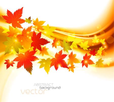 autumnal: Autumnal leaf of maple and sunlight background Illustration