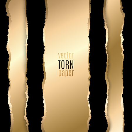 torn: Vector illustration Gold and black torn paper. Template background