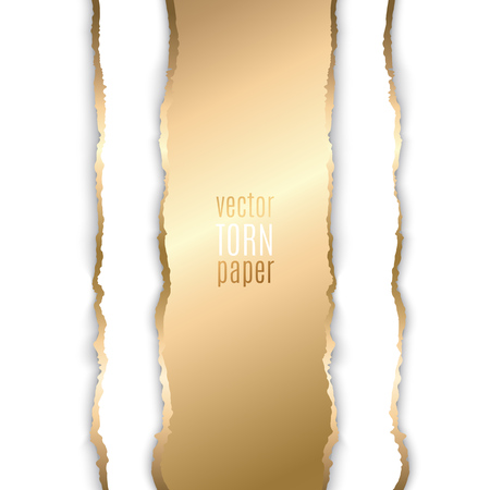 scrap: Vector illustration Gold torn paper. Template background