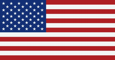 usa: United States flag. USA flag. American symbol