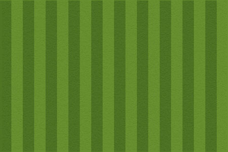 Soccer field, illustration. Football field with lines