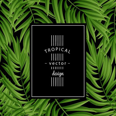 Tropical Palm leaves. Tropic palm. Tropical Palm leaf. Green tropic palm. Green palm summer tropical leaves. Tropic leaves frame. Green summer tropic palm leaves. Square frame. Illustration