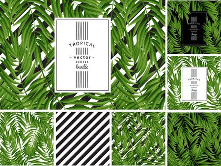 Tropische palmbladeren. Tropic palm. Tropische Palmblad. Groene tropische palm. Green palm zomer tropische bladeren. Tropic verlaat frame.Green zomer tropische palmbladeren. Vierkant frame.Square ontwerp tropische palm