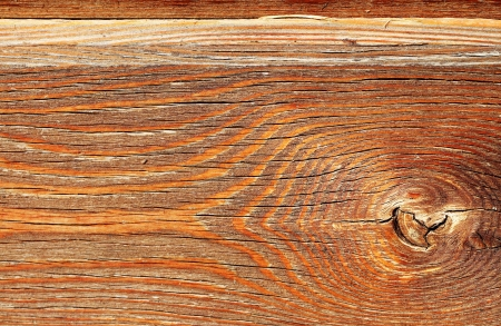 coverings: natural wooden texture close up, background   Stock Photo