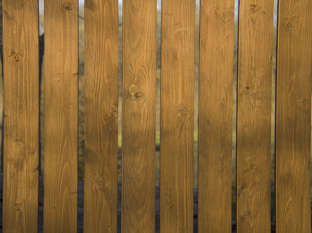 fense: Fragment of wooden fense at sunny day