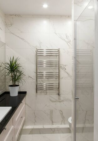 Bathroom with shower cabin and heated towel rail Banque d'images